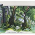 003_ancient-forest-ruins_colour.jpg