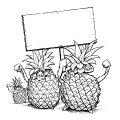 006_free-the-pineapple.jpg