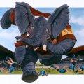 002_brewster-rugby.jpg