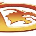 021_dragon-logo-coloured.jpg