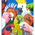 003_chirpy-birds.jpg