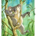 004_lazy-koala.jpg